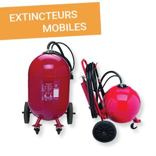 Extincteurs mobiles - Esquive Incendie Niort (79)